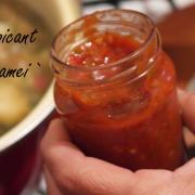 Ketchup picant făcut în casă - Mom's recipe