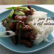 Porc gătit în stil (aproape) vietnamez