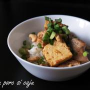 Tofu cu cotlet de porc și caju