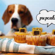 Pupcakes. Brioșe pentru căței