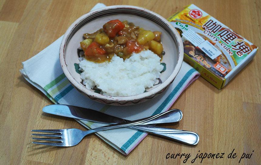 curry japonez de pui
